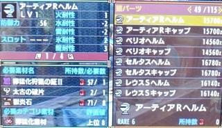 DSC_44454.jpg