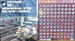 DSC_40846.jpg