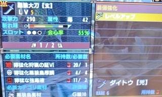 DSC_43481.jpg