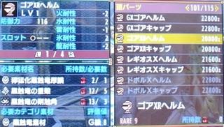 DSC_44418.jpg